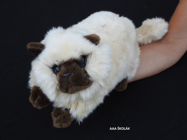 Plyšová kočka 45 cm krémová s hnědým čumáčkem